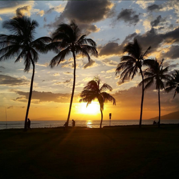 A sunset in Maui. Source: Mauishine, Instagram.