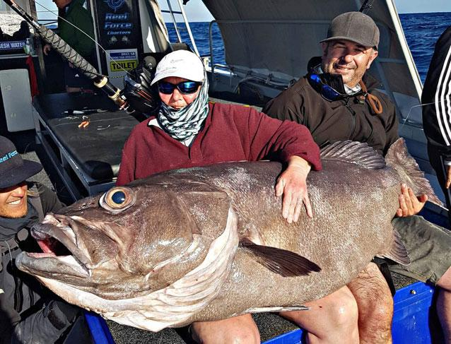 Mum catches 62kg giant bass grouper off coast of wa for The fish elizabeth bishop analysis