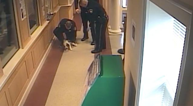 Officers save tiny puppy from choking