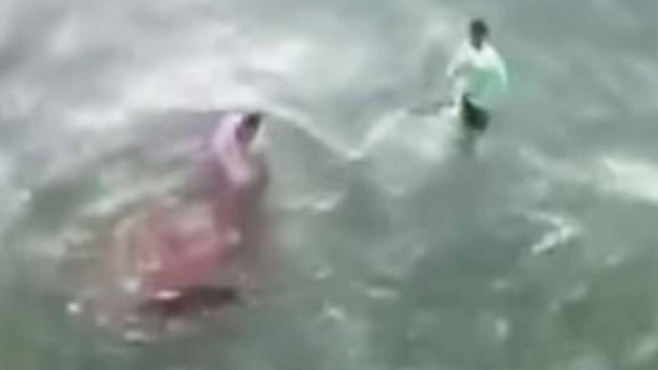Swimmer bitten by bull shark at Haulover Beach