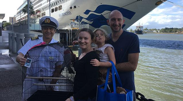 Cruising cockatoo is reunited with family