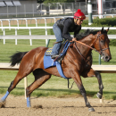 Triple Crown hopeful American Pharoah, Martin Garcia up, breezes at Churchill Downs in Louisville, K.Y, Tuesday, May 26, 2015. (Churchill Downs/Reed Palmer Photography via AP) NO SALES