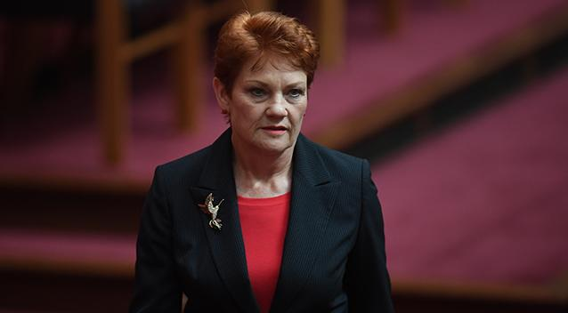'You owe my son an apology' - Labor MP to Pauline Hanson