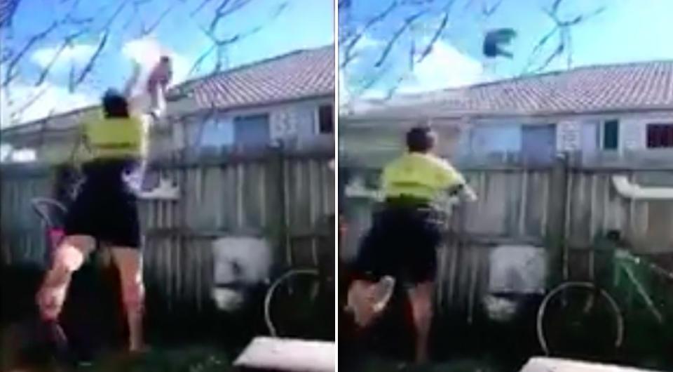 RSPCA Queensland wants help to track cat thrower