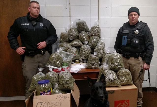 Elderly couple tells cops 60 pounds of pot was Christmas gifts