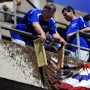 Royal bumble: Bees take over Kansas City game yet again