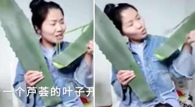 Vlogger accidentally poisons herself while biting plant on live stream