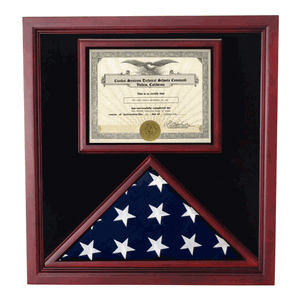 Flag And Document Display Case-Veterans
