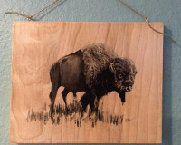 Buffalo on Wood