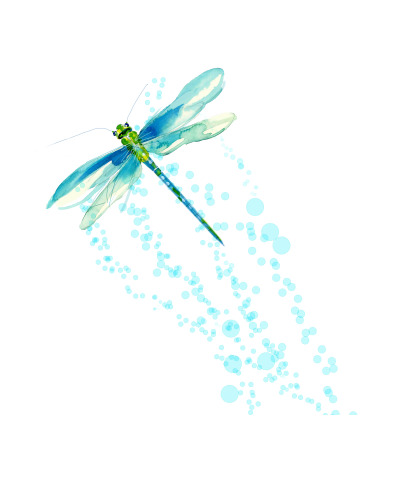 Dragon Fly Blue-Up-12x12