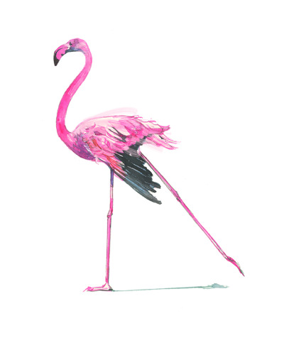 Flamingo Hot Pink-8x8