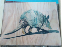 8x10 Armadillo on Wood