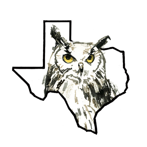 Texas Owl-4.25x5.5 Card