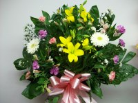 Bright Tribute Basket ES3058