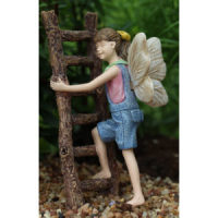 Fairy Gracie with Ladder