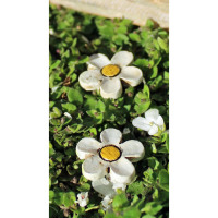 Flower Stepping Stone (Set of 3)