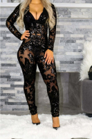 Black See Through Deep V Sexy See Through Jumpsuit