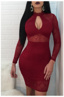 Rose Red Lace Hollow Sexy Mini Dress