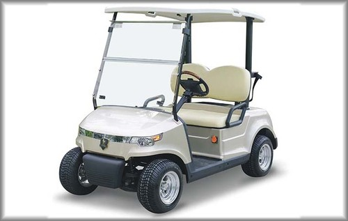 Electric Golf Cart - Model DG-C2