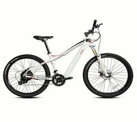 Electric Mountain Bicycle Model EB-15A