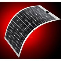 LenSun 60W Flexible and Portable Solar Panel - Silver