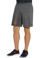 Champion Mens Jersey Short-Graphic