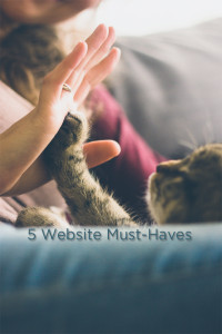 5 Website Must-Haves