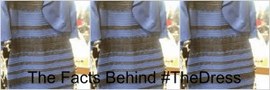 TheDress Header