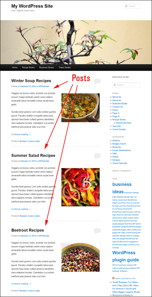 WP Tutorial: How To Add A Blog Page To WordPress