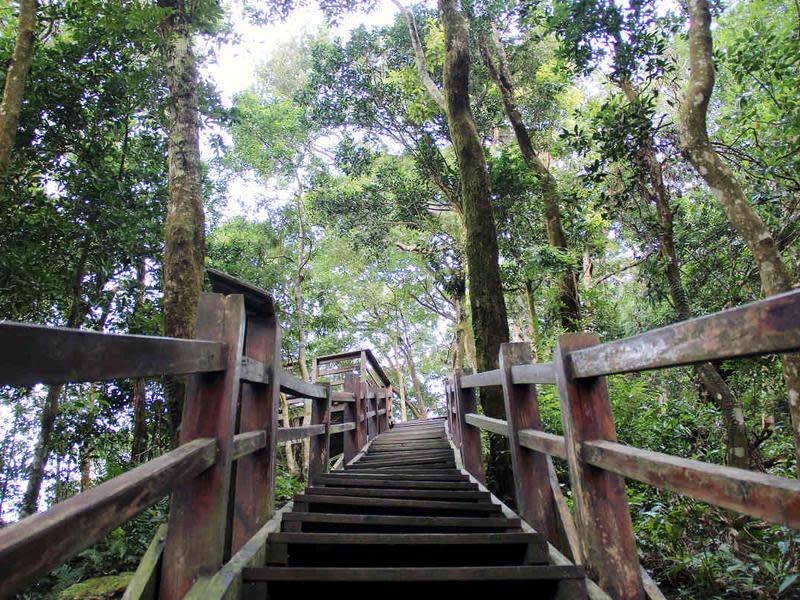馬武督森林步道