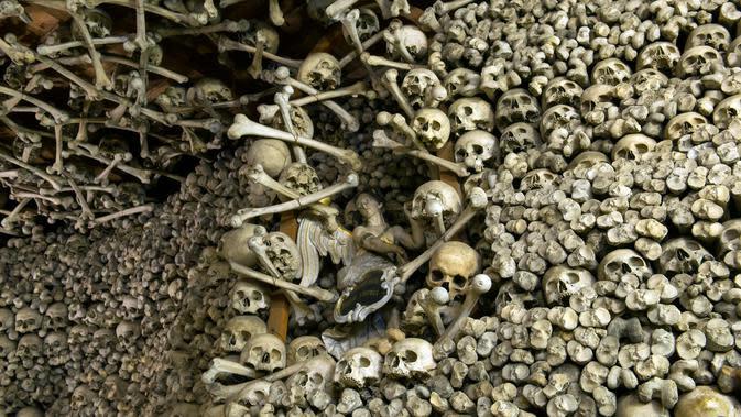 Tengkorak dan tulang-belulang terlihat di Gereja St Bartholomew, Polandia, (31/10). Sebanyak 3.000 lebih jasad manusia digunakan untuk menghiasi interior Gereja ini. Sementara 20.000 tersimpan di ruang bawah tanah. (AFP Photo/Natalia Dobryszycka)