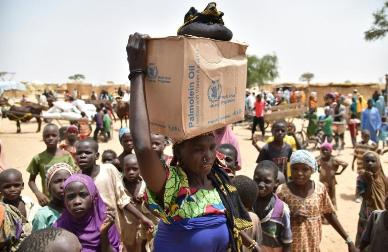 Hundreds of thousands of people in Diffa, southeastern Niger, depend on food handouts to survive (file picture)