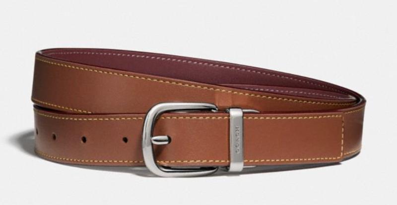 Harness Buckle Reversible Belt, 25mm (Credit: Coach)