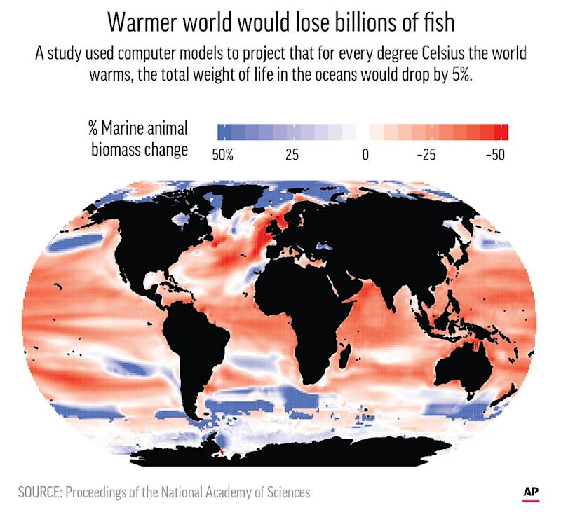 For every degree Celsius (1.8 degrees Fahrenheit) that the world's oceans warm, the total mass of sea animals is projected to drop by 5 percent.