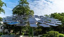 另類裝置藝術,印度打造世界最大「太陽能樹」