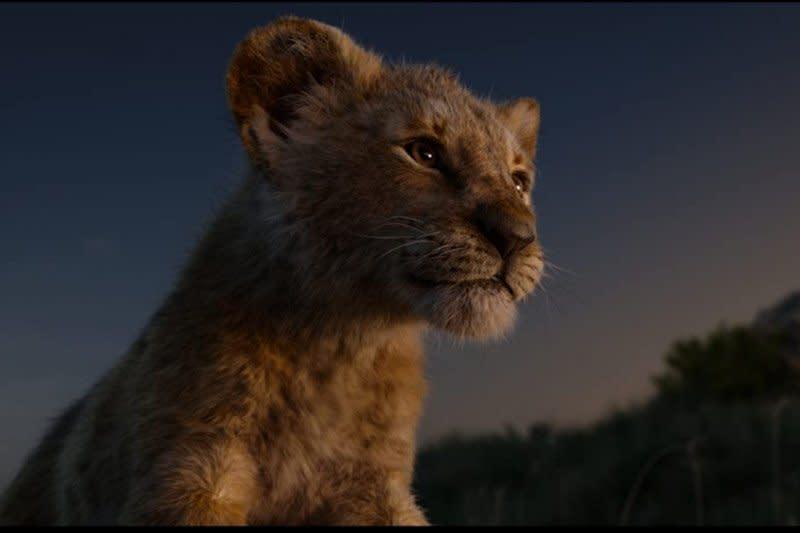 "Barry Jenkins sutradarai sekuel ""The Lion King"""