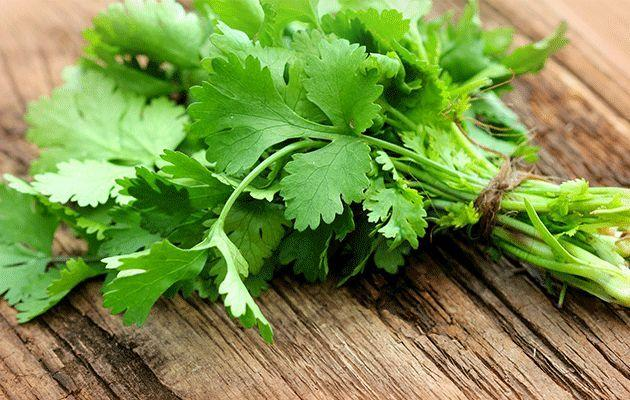 The soapy taste of coriander can be blamed on you genes. Photo: Thinkstock