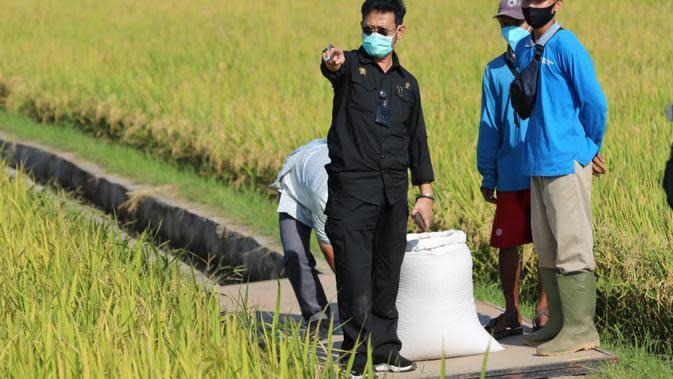 RJIT Kementan Genjot Peningkatan IP di Kecamatan Pundi Bantul