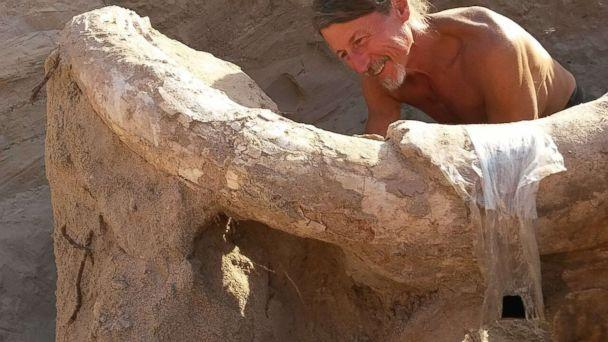 PHOTO: Professor Peter Houde of New Mexico State University, confirmed the fossil to be that of a Stegomastodon--a mastodon-like or elephant-like animal. (Peter Houde )