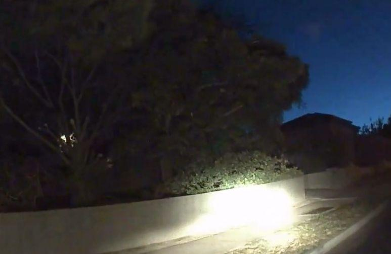 The black car was turned to face a garden wall. Source: Dash Cam Owners Australia/ Facebook
