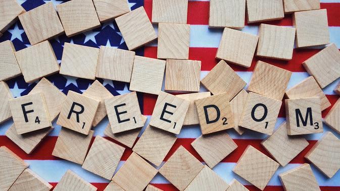 Demokrasi Adalah Bentuk Pemerintahan. (Sumber: Pixabay)