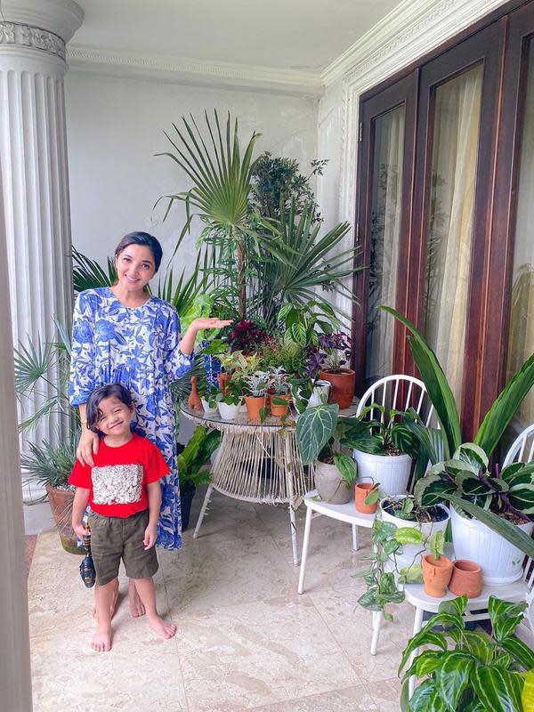 Di halaman belakang, Ashanty menunjukkan salah satu tanaman yang berjejer rapi. Tanaman mahal milik Ashanty itu juga akan dikasihkan ke Baim kalau jadi membeli istana cinere. Meski Ashanty menolak memberikan. (Instagram/ashanty_ash)