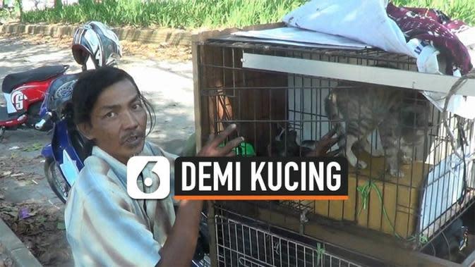 VIDEO: Viral, Demi Urus Kucing, Pria Ini Rela Hidup Nomaden