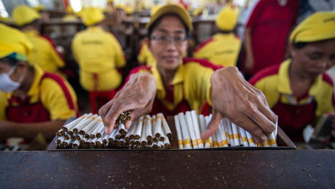 Pekerja merapikan batangan rokok yang telah selesai dibuat di PT Hanjaya Mandala Sampoerna (HMSP)Tbk, Surabaya, Kamis (19/5). HMSP mendapat rekor MURI dengan kecelakaan kerja nihil selama 20 tahun (1996-2006). (AFP Photo/Juni Kriswanto)