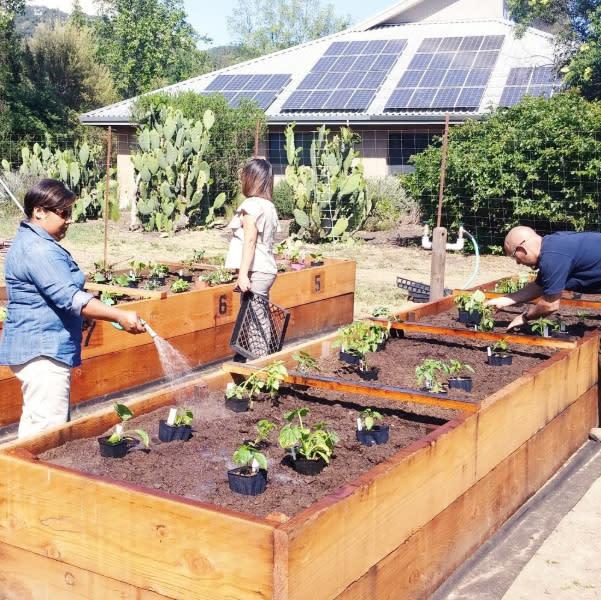 Fetzer Vineyardszs使用太陽能板節能減碳。(圖片來源:Fetzer Vineyardszs官方粉絲團)