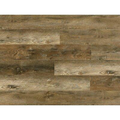 8mm Oak Laminate Flooring, Wayfair Laminate Flooring