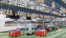 全球感染人數創記錄 德國肉聯廠再傳疫情