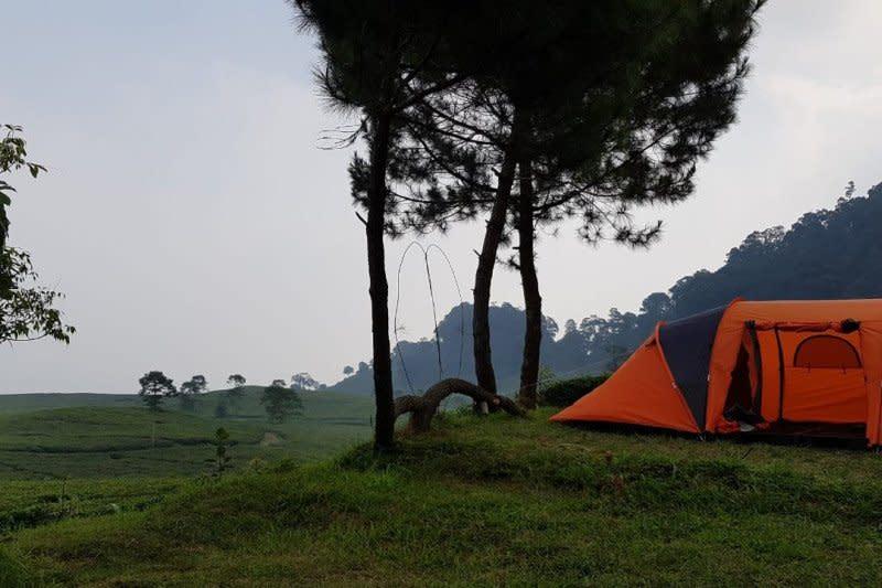 UI bina pengelola wisata kemping di Bogor agar siap hadapi normal baru