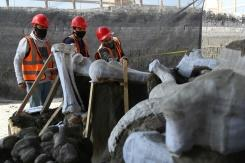 Kuburan mammoth ditemukan di bandara baru Meksiko