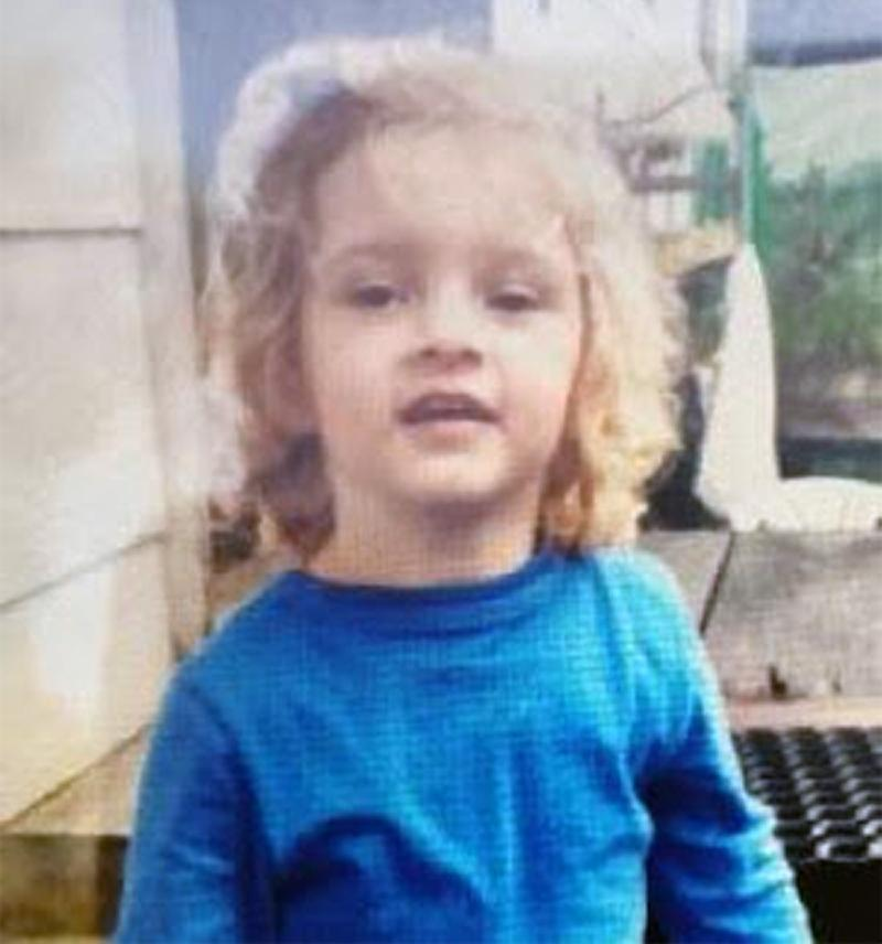 A supplied image obtained on Monday, August 19, 2019, of a 3-year-old girl who has gone missing on a property at Cootharaba on the Sunshine Coast. Source: AAP Image/Queensland Police